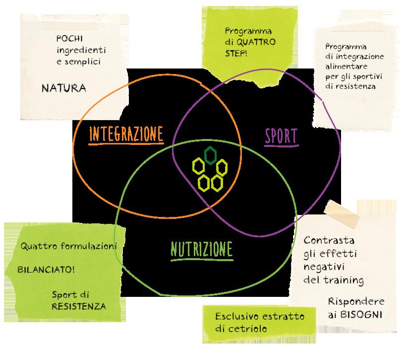 Esempio di focalizzazione di un brand e di una gamma di prodotti