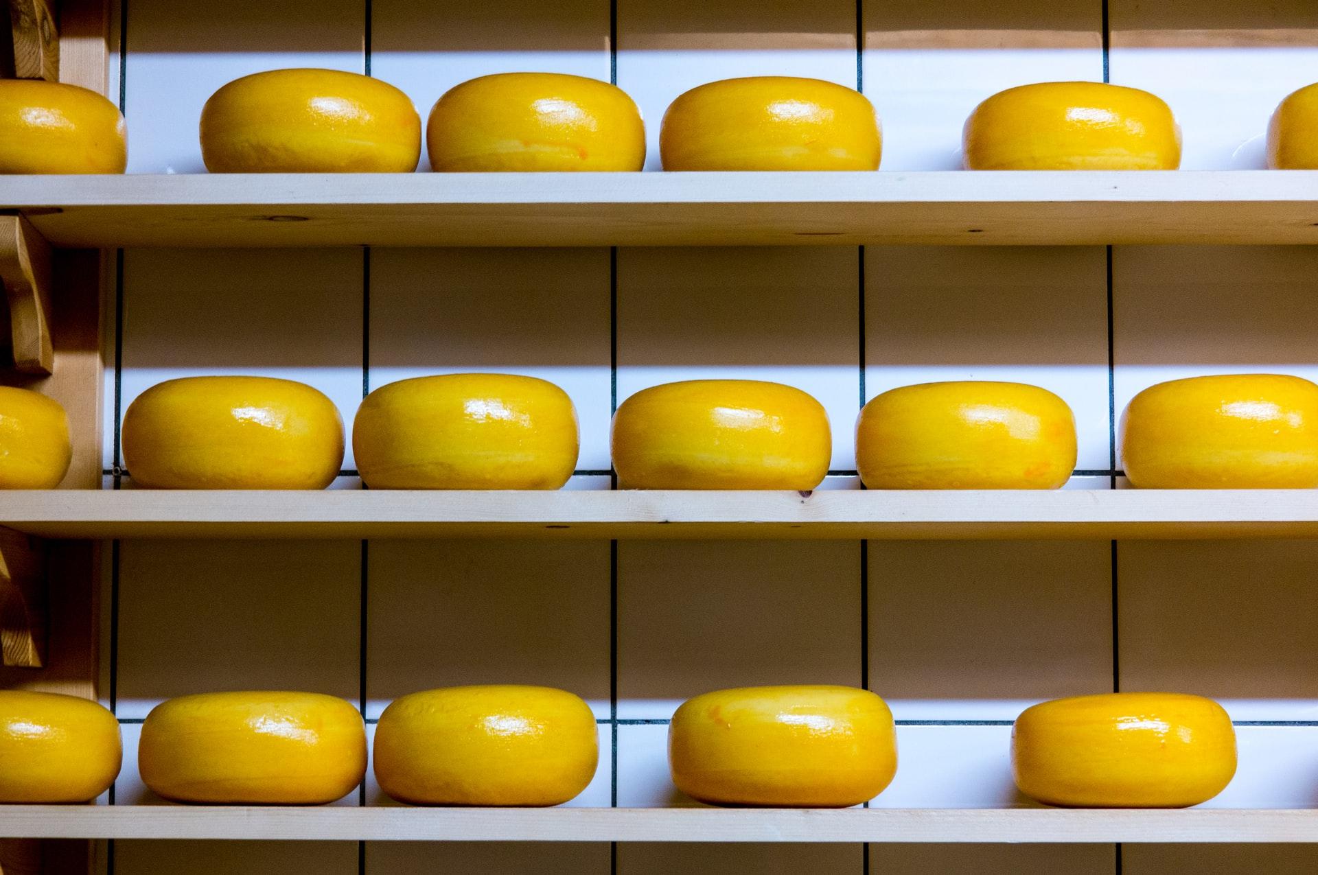 chi ha spostato il mio formaggio