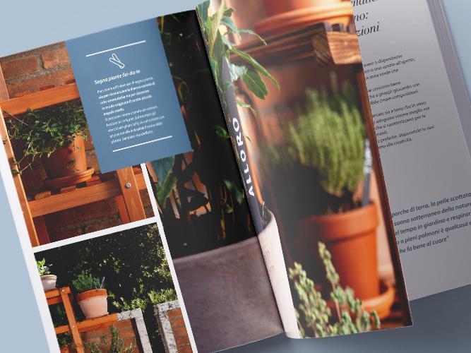 Studi grafico del layout e griglia di impaginazione per rivista periodica aziendale